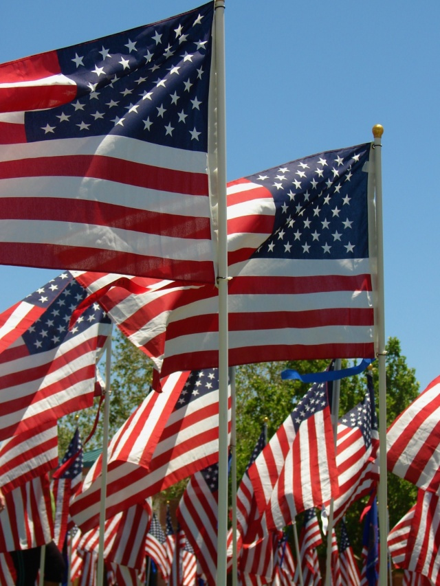american-flags-on-memorial-day